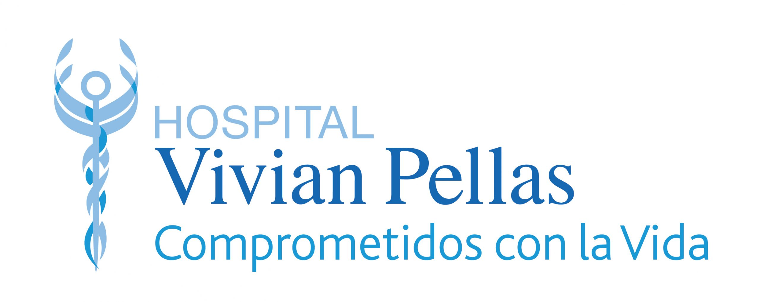 Imagotipo_Hospital_Vivian_Pellas
